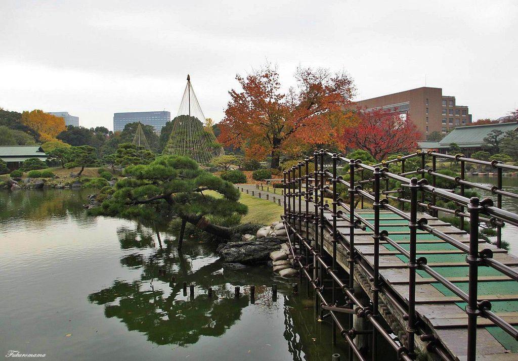 20121130清澄庭園 (35).JPG
