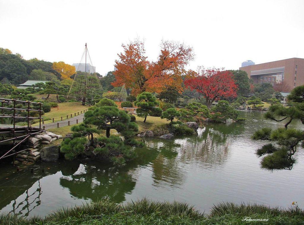 20121130清澄庭園 (36).JPG
