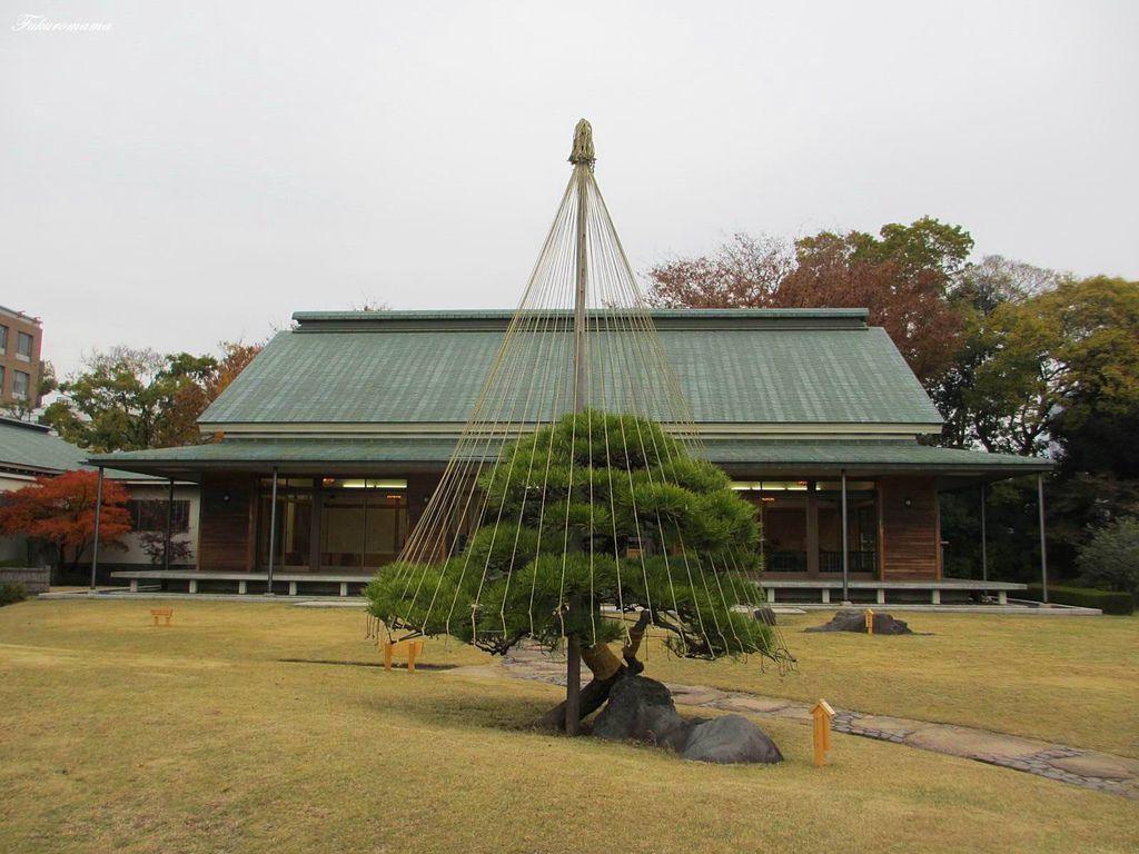 20121130清澄庭園 (39).JPG