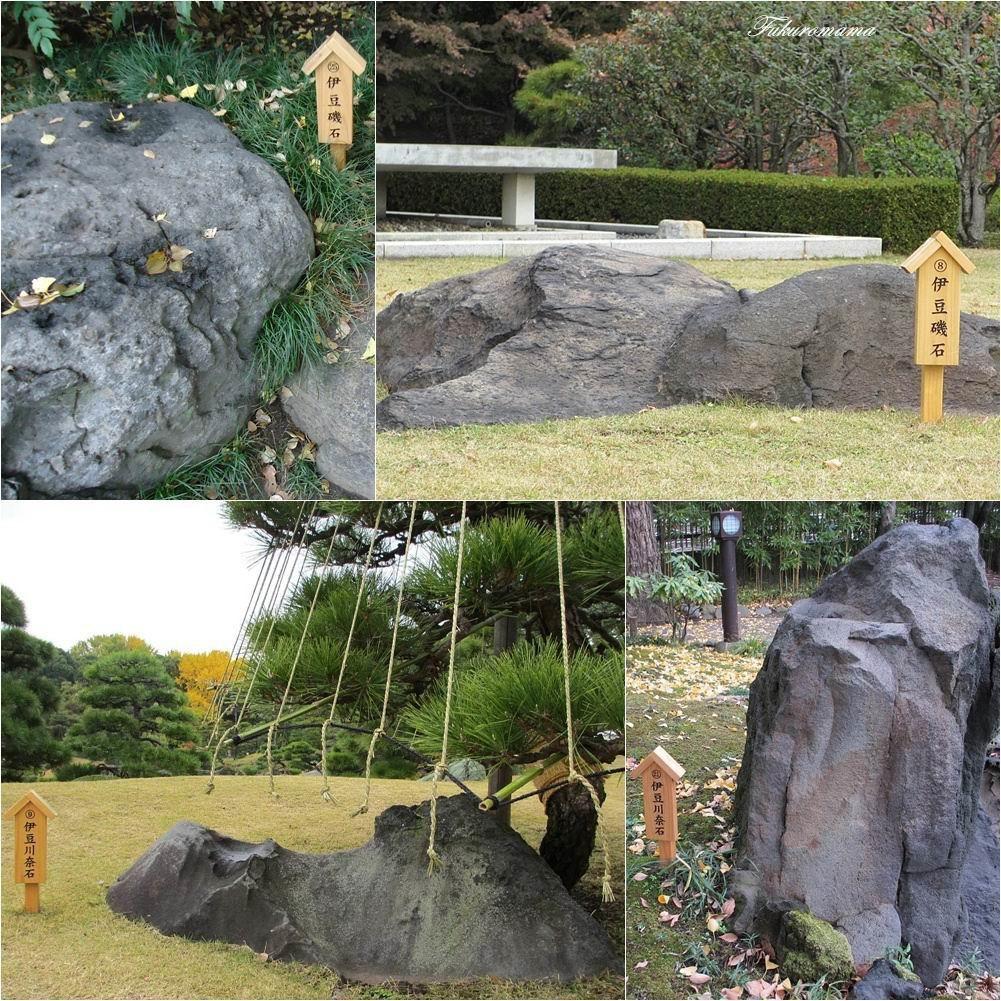 20121130清澄庭園 (41).jpg