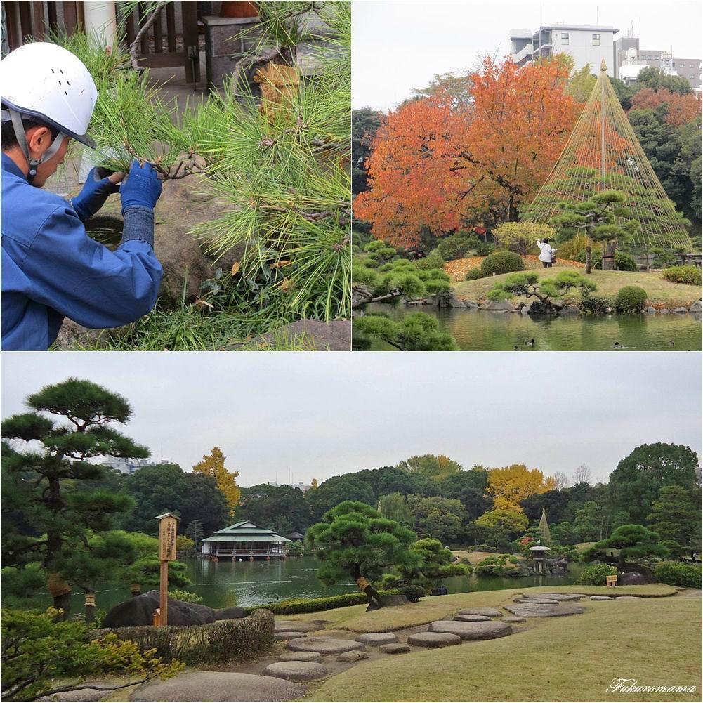 20121130清澄庭園 (43).jpg
