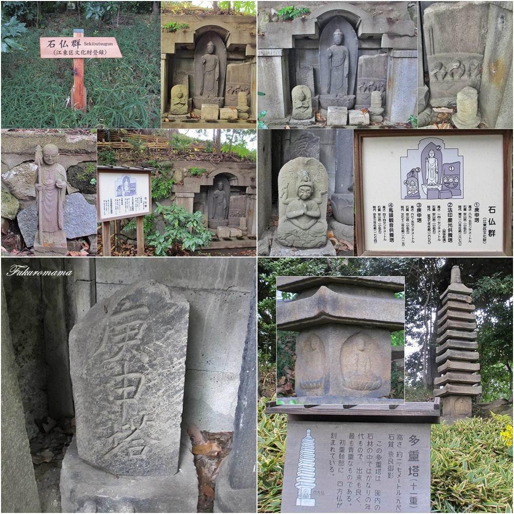 20121130清澄庭園 (46).jpg