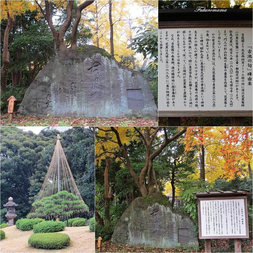 20121130清澄庭園 (45).jpg
