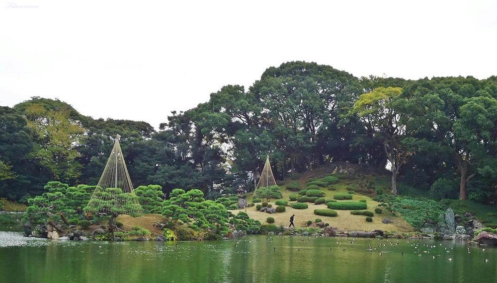 20121130清澄庭園 (49).JPG
