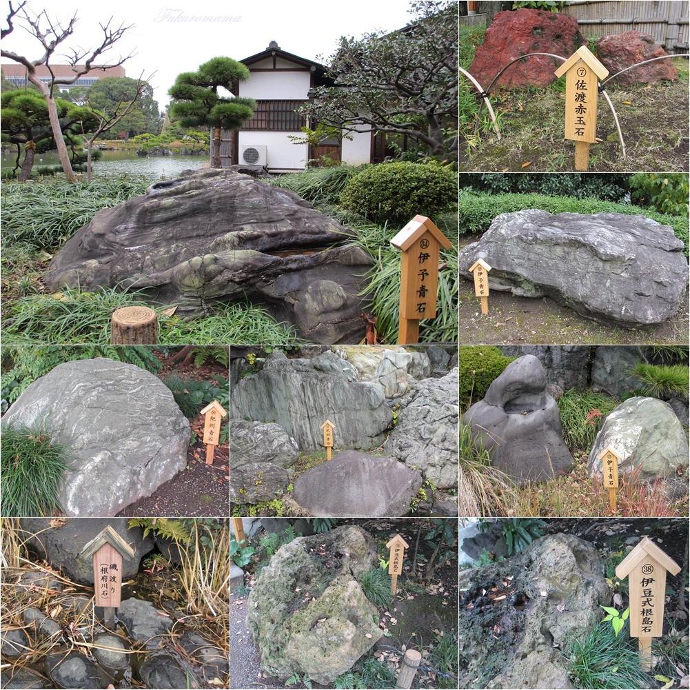 20121130清澄庭園 (52).JPG