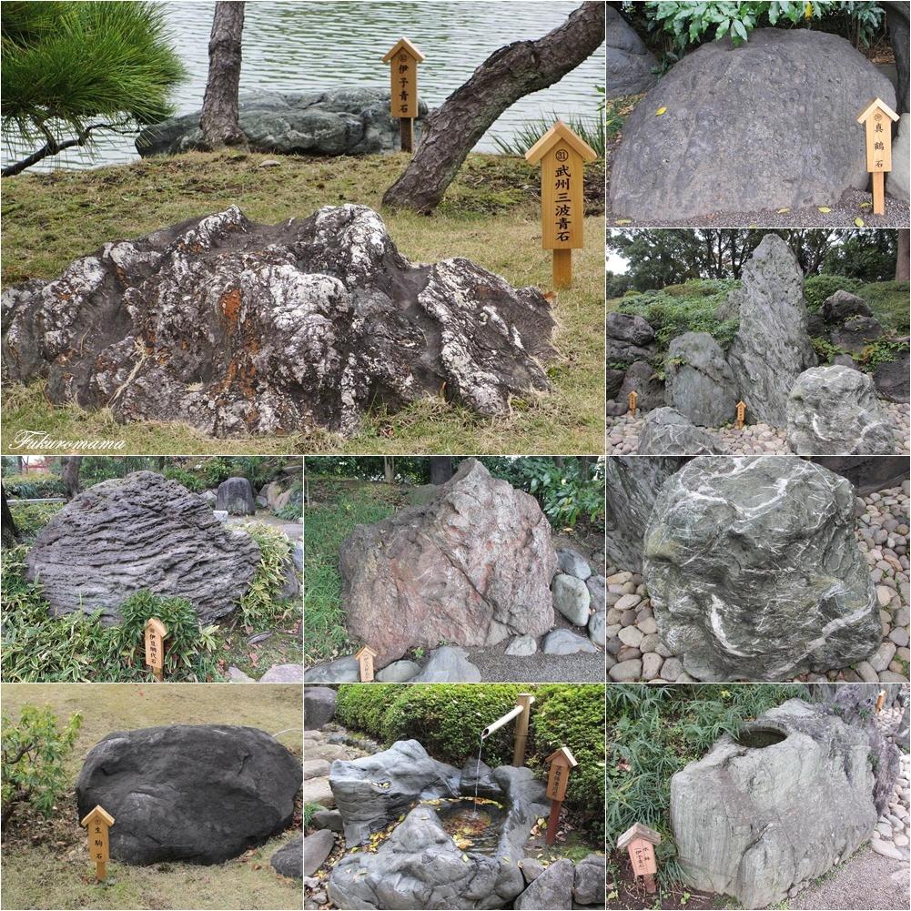 20121130清澄庭園 (53).JPG