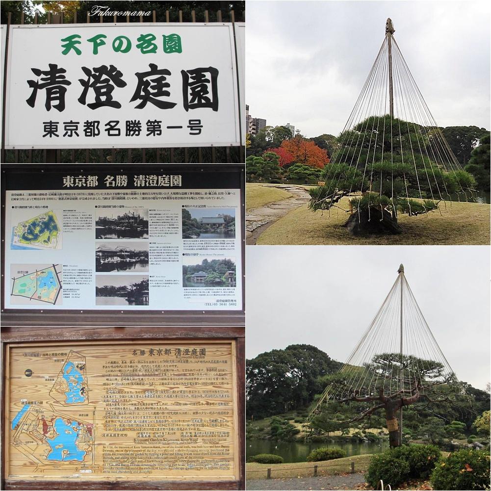 20121130清澄庭園 (55).JPG