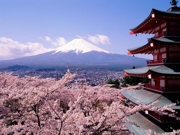 富士山與櫻花.jpg
