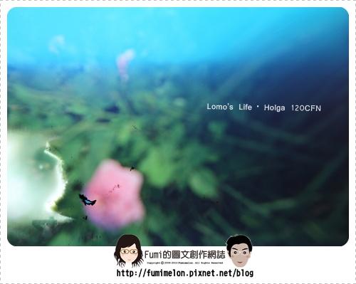 Holga#3_2009.05.14@Taipei