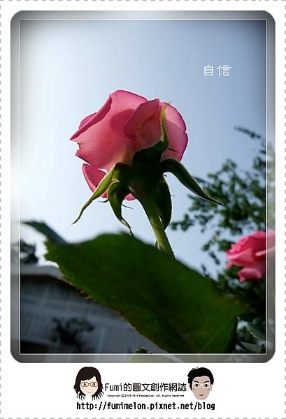 花朵物語-自信