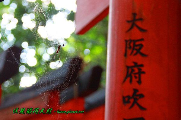 IMG_1340.jpg