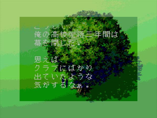 (188).jpg