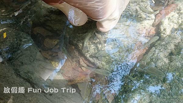 031(B)Erawan Waterfall .JPG