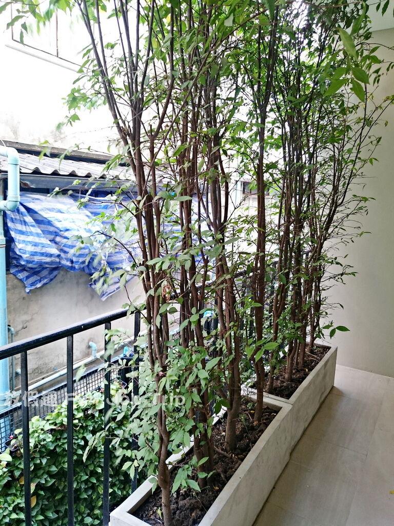 003Hotel Once Bangkok.JPG