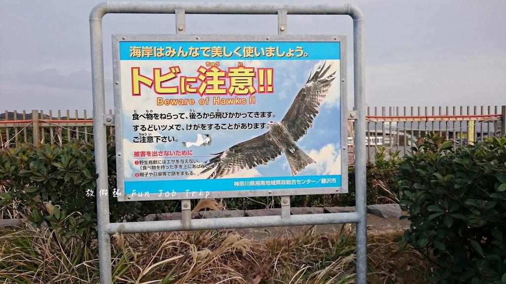 006江之島.JPG