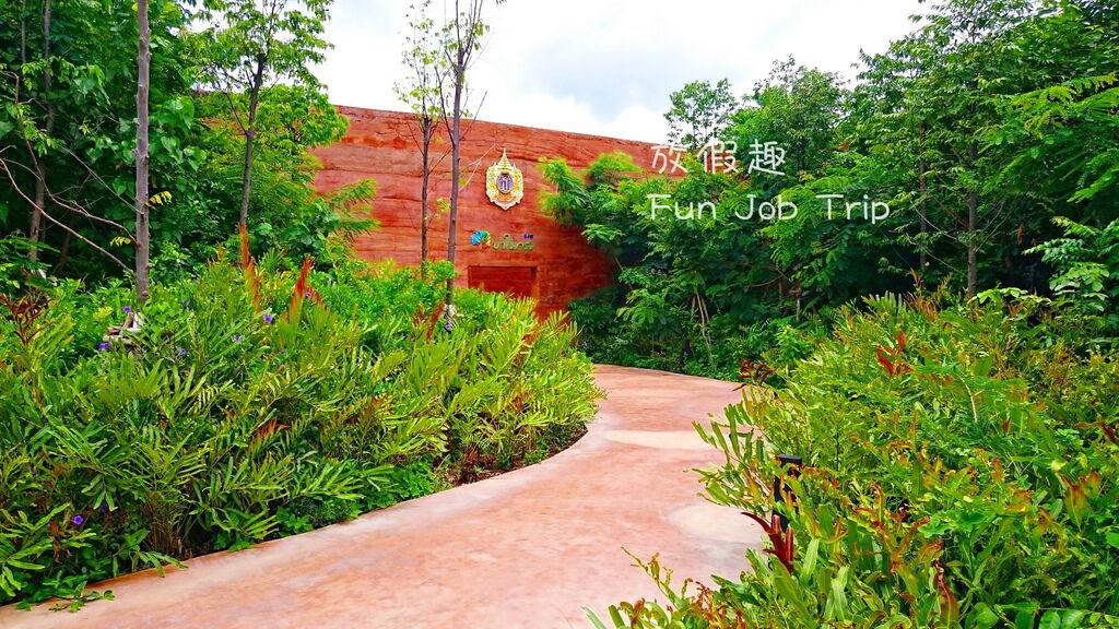 002PTT Forest.JPG