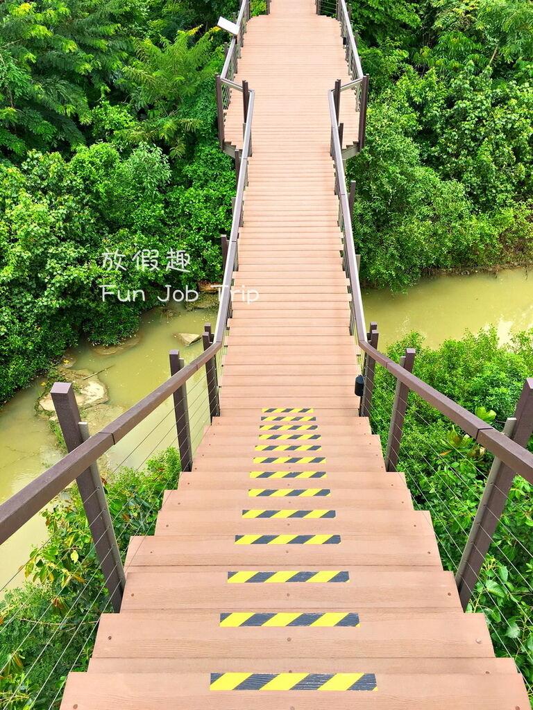 027PTT Forest.jpg