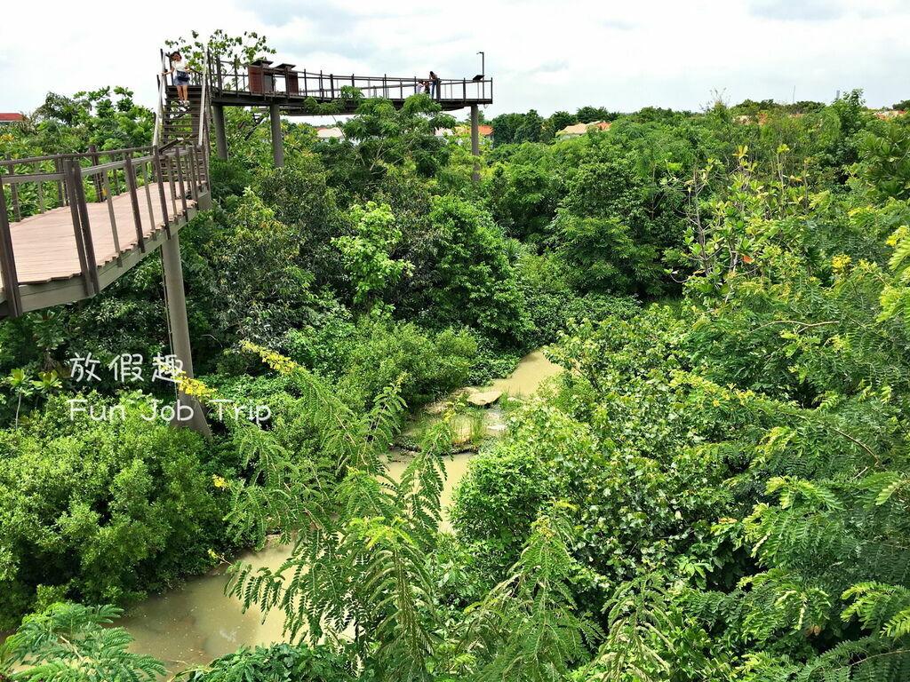 028PTT Forest.jpg
