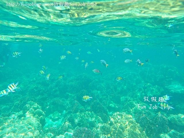 013.麗貝島浮潛(Jabang).jpg