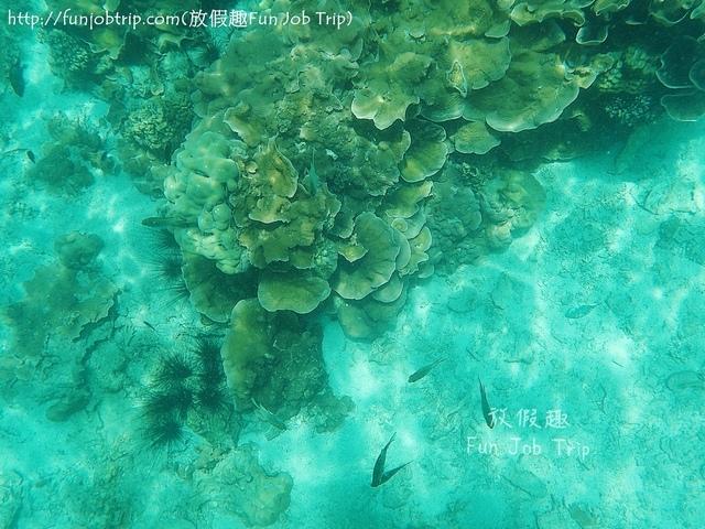 022.麗貝島浮潛(Koh Rawi).jpg