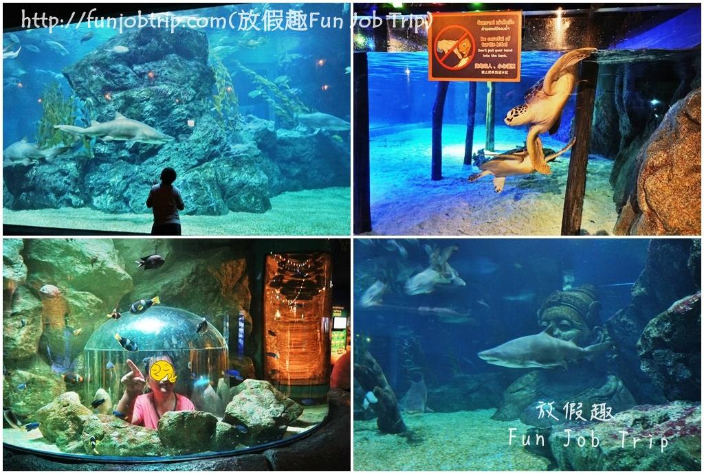038.暹羅海洋世界.jpg