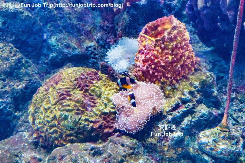 004_Copper Aquarium Restaurant.jpg