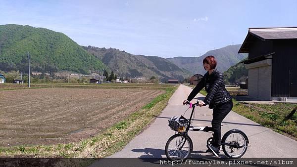 8_3腳踏車.jpg