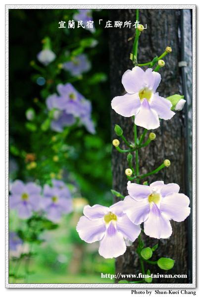 10JUL2009_304.jpg
