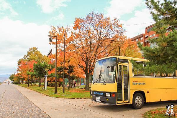 ▌2019北海道▌DAY4-北海道5天4夜自由行一日遊/中央巴士/觀光巴士