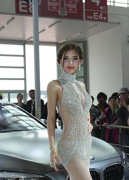 BMW 車模