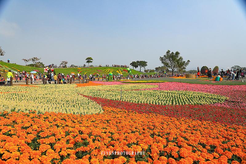 2017臺中國際花毯節47