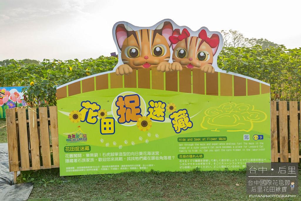 台中國際花毯節26