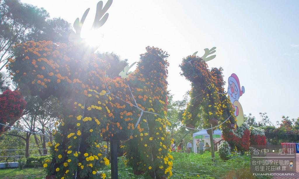 台中國際花毯節48