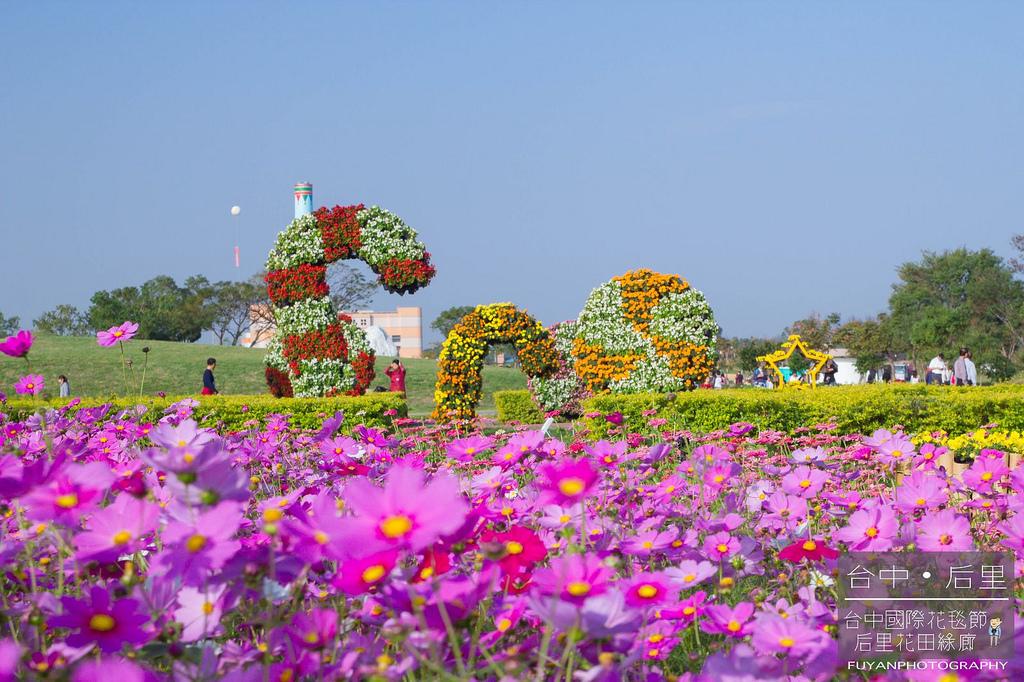 台中國際花毯節53