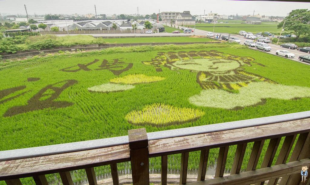 苑裡彩繪稻田 (6)
