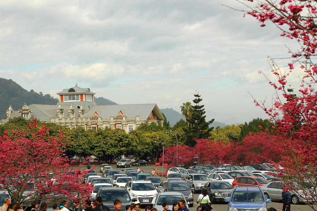 九族櫻花祭 (130)