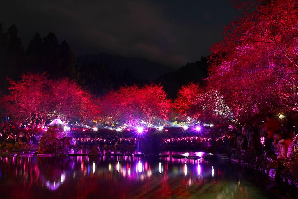 九族櫻花祭 (90)