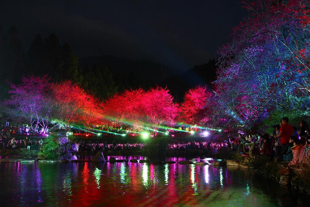 九族櫻花祭 (113)