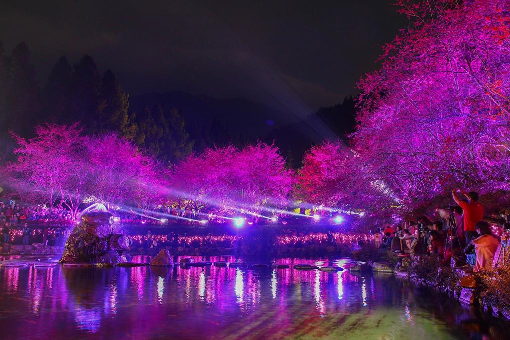 九族櫻花祭 (123)