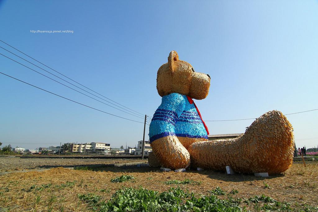 臺中地景藝術節 迷失小熊 (28)