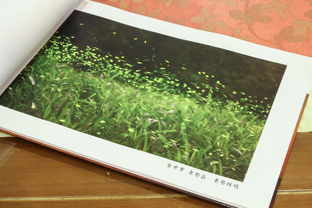20140521-IMG_0699
