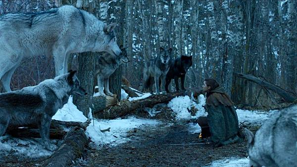direwolf 2.png