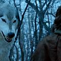 direwolf.png