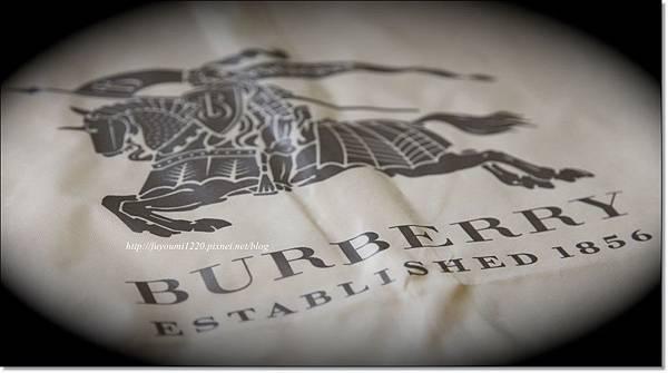 BURBERRY (2).jpg