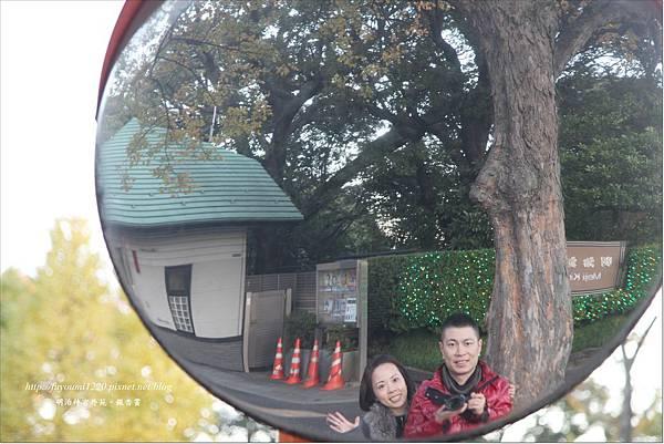 明治神宮外苑銀杏賞 (1)
