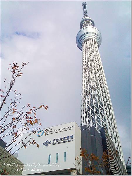 Tokyo skytree (4)