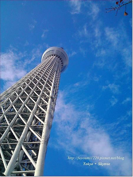 Tokyo skytree (5)