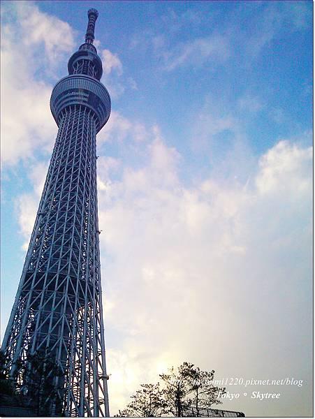 Tokyo skytree (7)