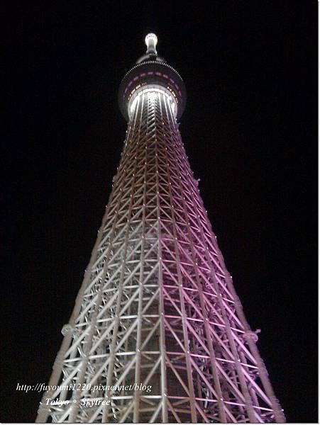 Tokyo skytree (13)