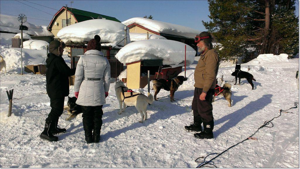 狗雪橇 (4)
